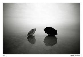 Shyness - Part I by Maciej-Koniuszy