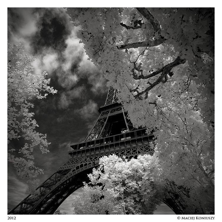 Paris by Maciej-Koniuszy