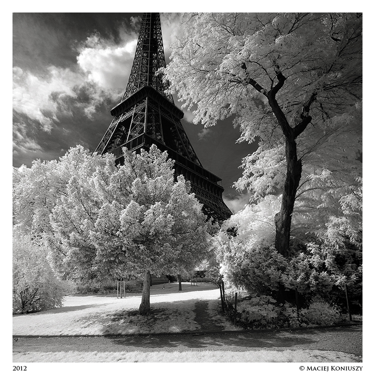 Paris V by Maciej-Koniuszy