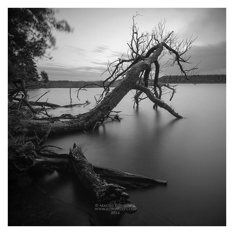 Charzykowskie Lake by Maciej-Koniuszy