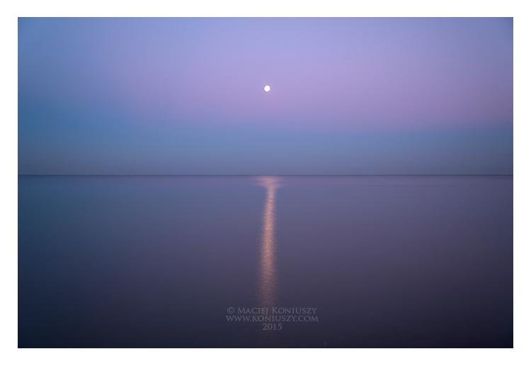 Nocturne by Maciej-Koniuszy