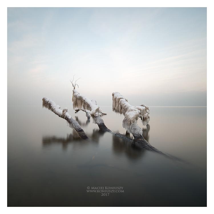 Winter by Maciej-Koniuszy