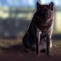 Ruthgar by foxipaw