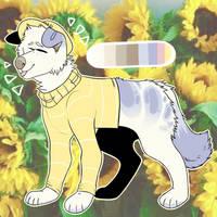 sunflower   (c) by nnars