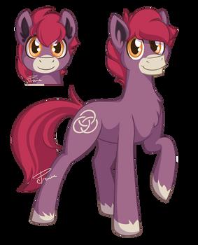 Oberon Pony