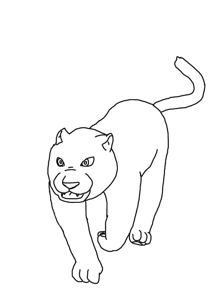 Cat by vasilia95