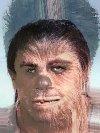 Human to Chewbacca MT by Druddy
