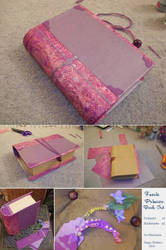 The Fairy Princess Book (2010) by BabyWolverine