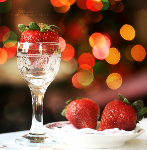 strawberry christmas