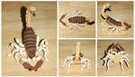 The Crocheted: Scorpion 2