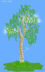 Birch Tree by janey-in-a-bottle