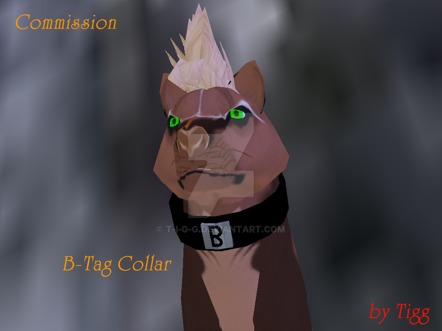 B-Tag Collar by T-i-g-g