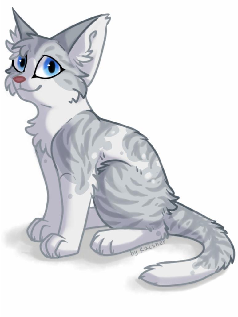Cat by Kaliner123