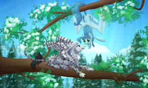 Comm: Treetop snuggles