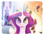 Amore And Cadence