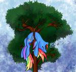 Rainbow Dash sleeping in tree