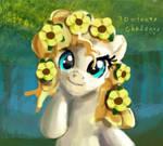 30min Challeange Pear Butter pony