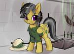 pony Daring Do adventure traps