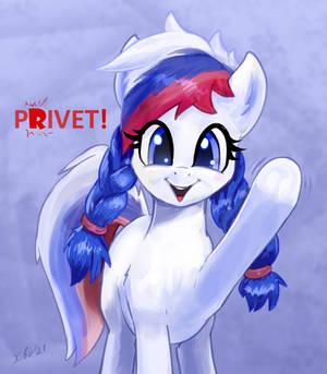 Marussia pony tells PRIVET