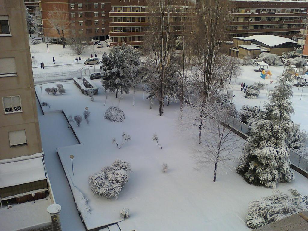 Snow by Larcheex-Clicexia