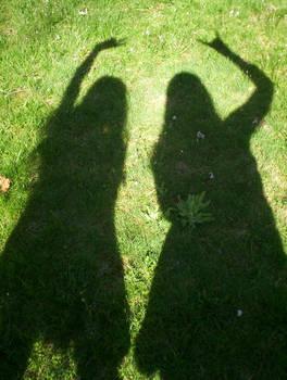 shadow friends