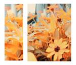 Creating Autumn