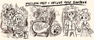 .:Fruit Salad:. Passion Fruit + Apricot Doodles