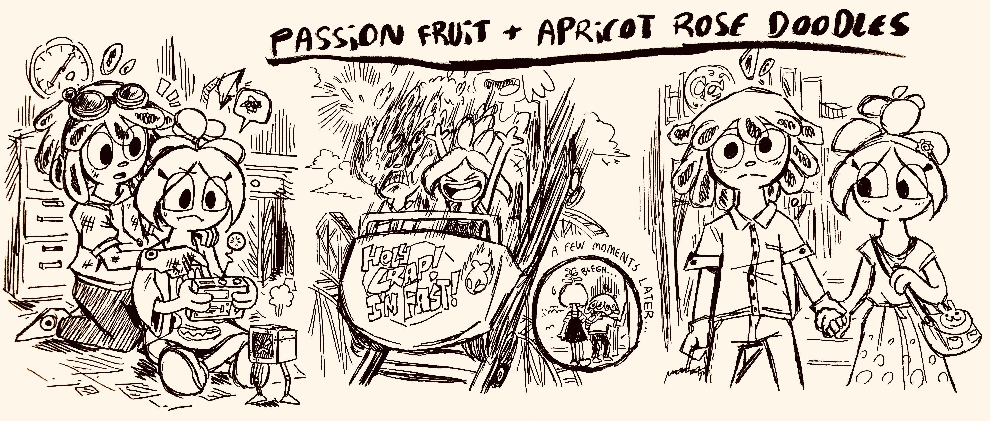 .:Fruit Salad:. Passion Fruit + Apricot Doodles