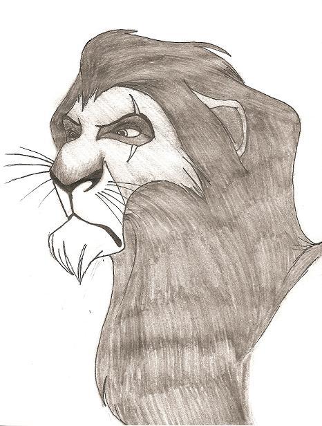 Scar by akane8894