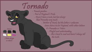 Character Sheet - Tornado by LittleHybridShila