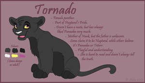 Character Sheet - Tornado