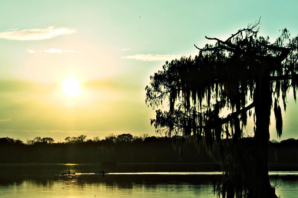 DownOnTheSwampsIII by HonestyAct