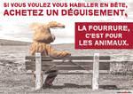 Cause animale - affiche de sensibilisation