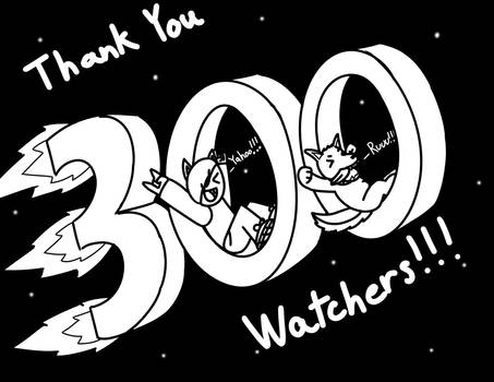300 Watchers