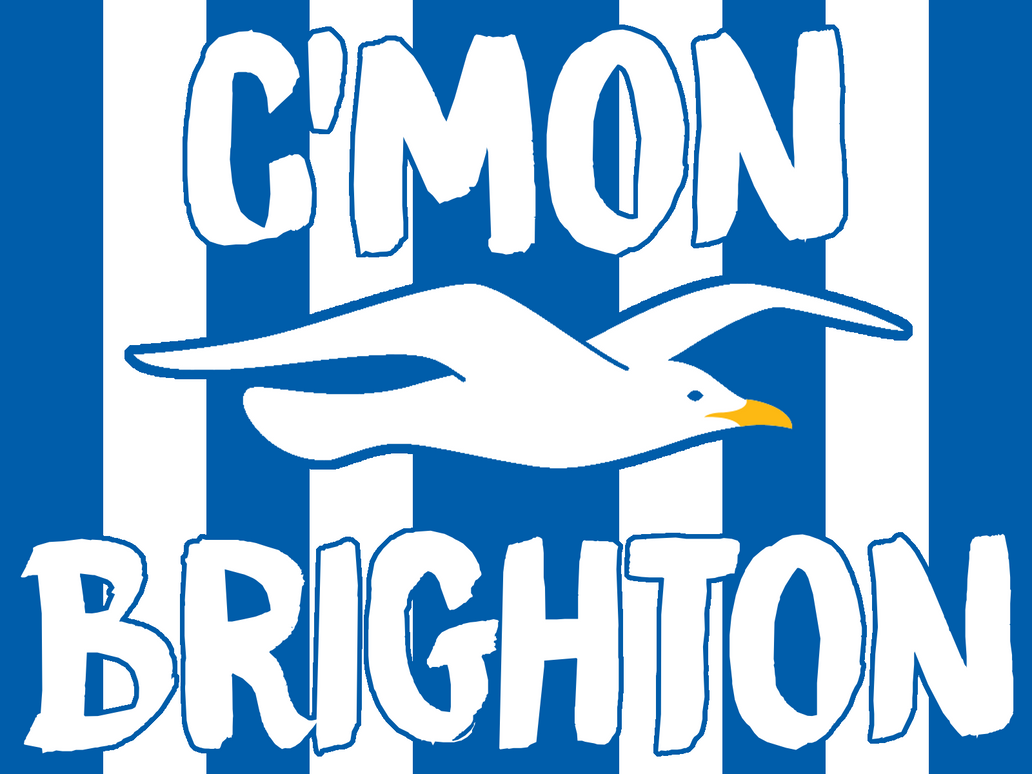 Brighton And Hove Albion Football Club Wallpaper By