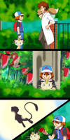 PKMN: NG: On to Adventure