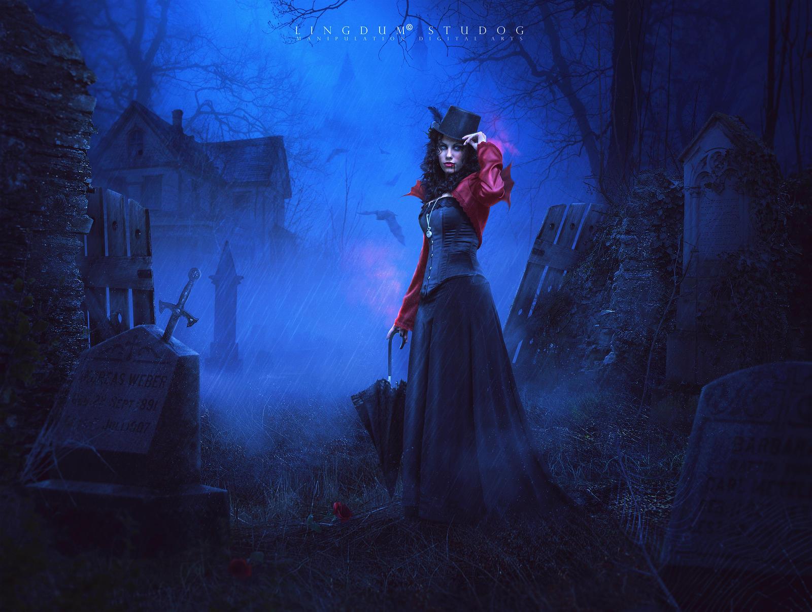 Transylvania by LINGDUMSTUDOG