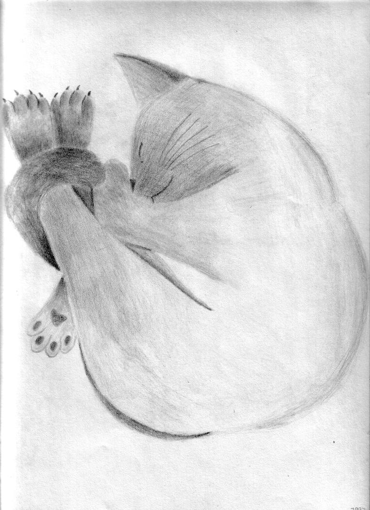 Fritzy Sleeping by SilverFritillary