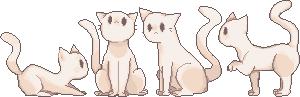 cats by Futella