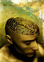The Phantoms of the Brain by richworks