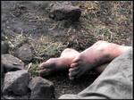 Feet of ash