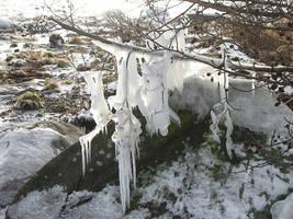 ice tree by malicia-stock