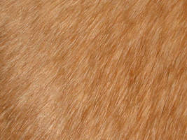 fur_01 by malicia-stock