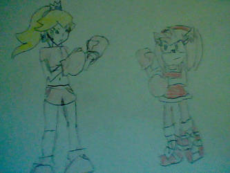 Request: Princess Peach and Amy Rose Boxing