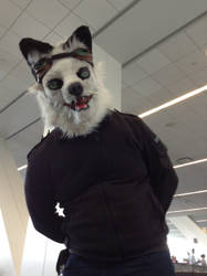 Anthrocon 2014: Frothymess by murkrowzy