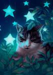Nyunya the cat