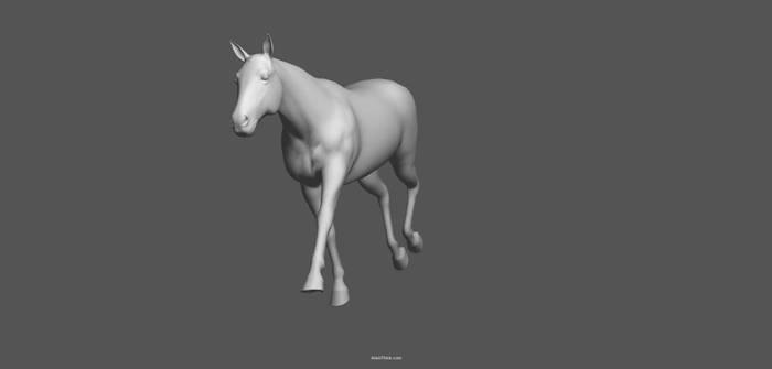horse pose tool 3d pose 3