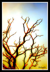 the dead tree by tiquitiqui