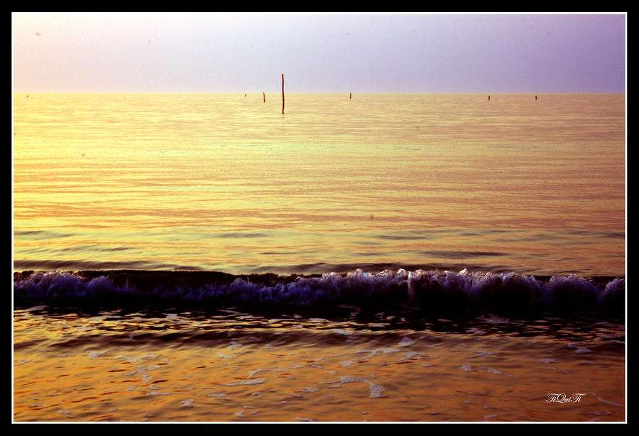 wave in yellow sea