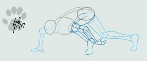Human Quad Walk Cycle by Tusami